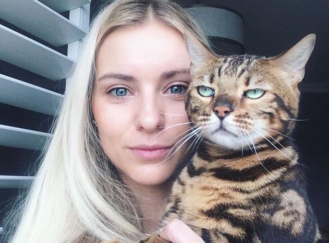 Gatos que no quieren salir en tus estúpidos selfies