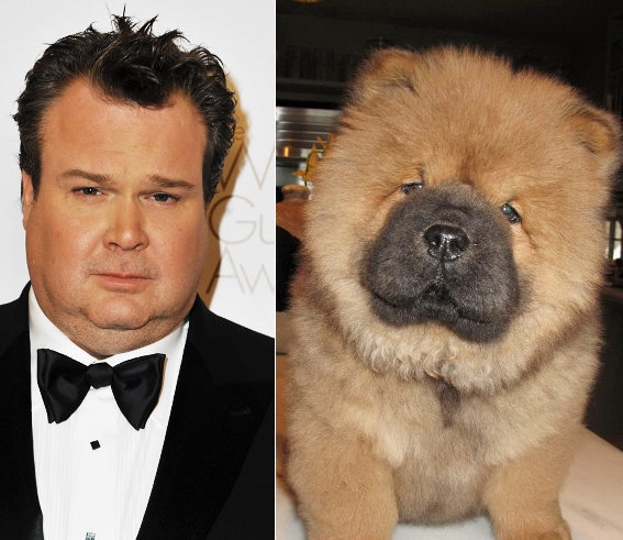 celebrities look like animals