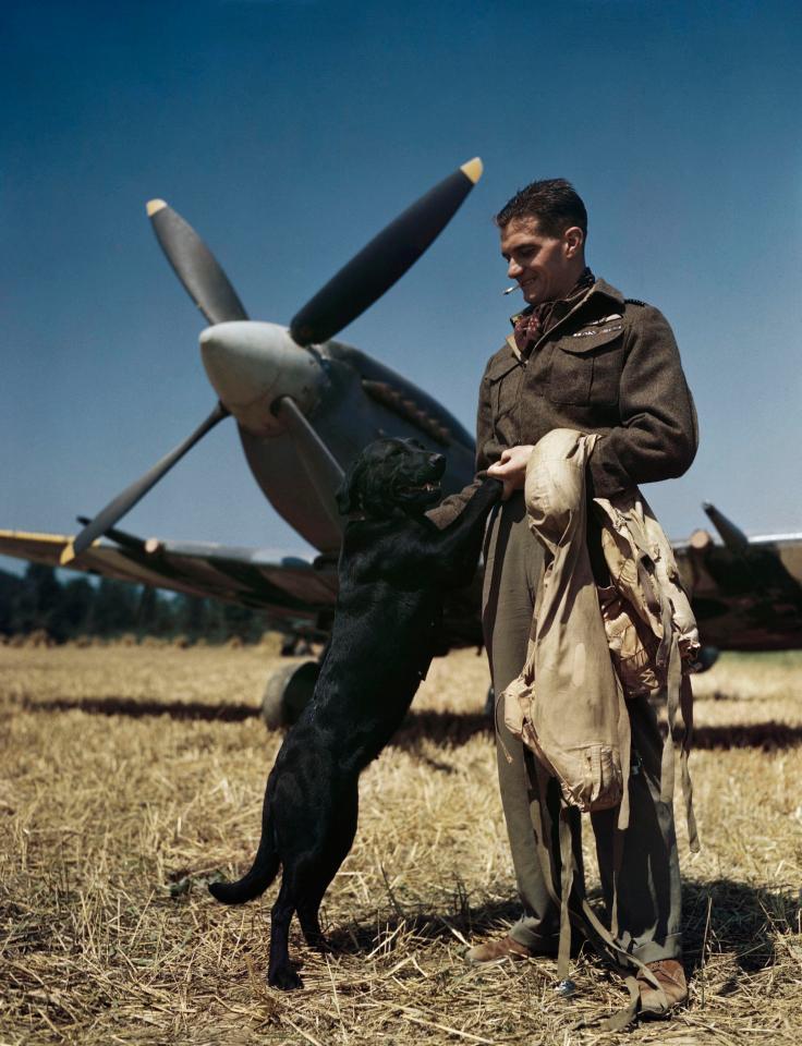 二战罕见彩色照片曝光 多数为首次面世