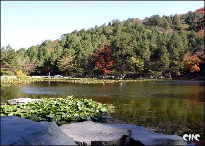حديقة شيانغشان (الجبل العطري 213884.jpg