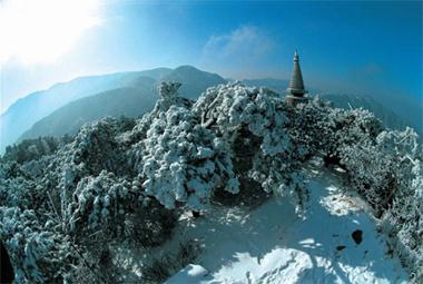 去庐山,可以感受着千百年来中华的沧桑,可以追寻着先人们的