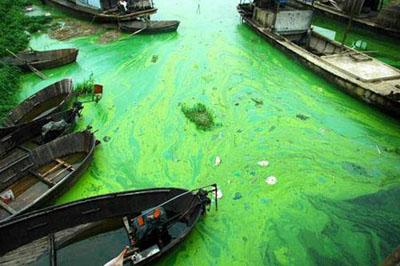 China's Three Gorges Dam: An Environmental Catastrophe?