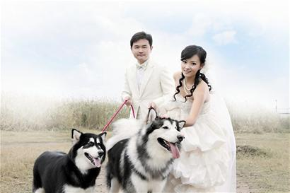 """""""嫁给我吧,带着你的狗狗"""""""