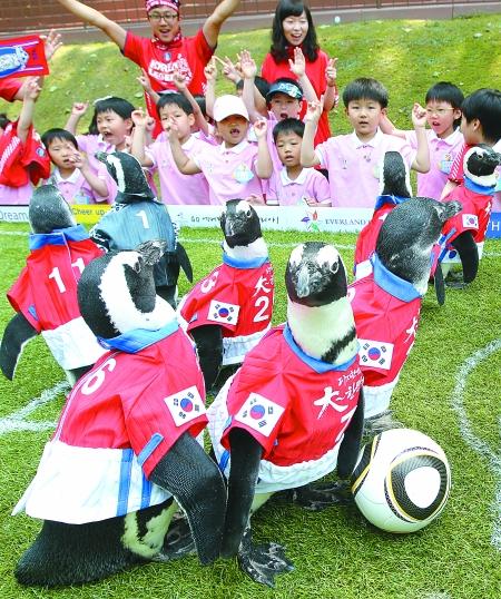 关键词: 踢足球
