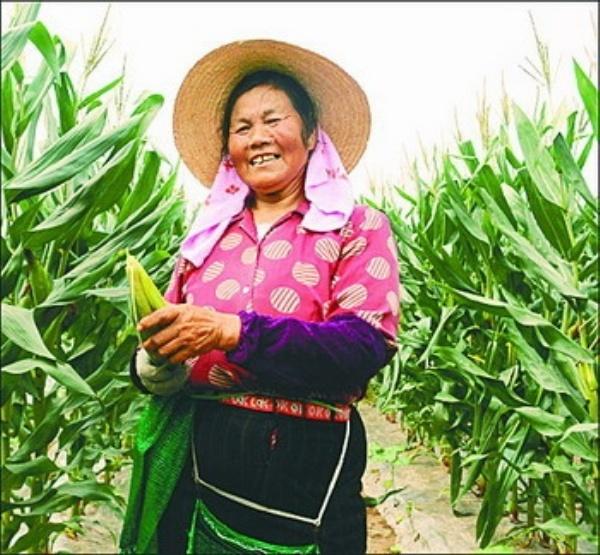 玉米衣,玉米须编织成手工艺品