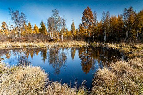 摄影天堂 追寻小兴安岭的炫丽深秋