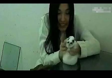 女虐女视频_虐杀动物有利可图 虐兔女视频惹众怒遭网友人肉(组图)