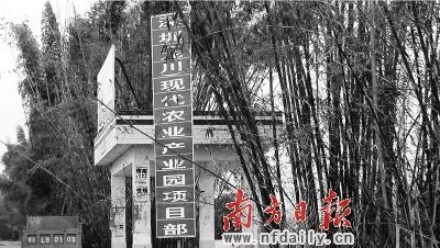 """新闻台 新闻中心    龙川鹤市镇产业扶贫实施一年初显""""双到""""成效,贫困"""