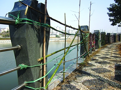 搞来绳子和竹子,木棍等绑在水泥柱上.