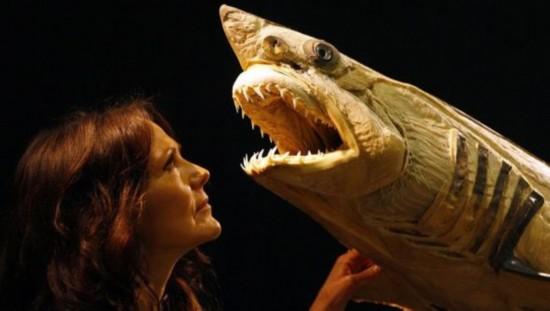 """哈根斯表示这些动物标本能够为游客提供一次""""解剖学之旅""""   北京时间4"""