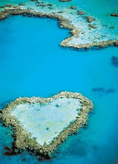 岛_大堡礁心形珊瑚岛.