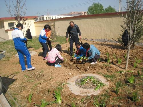 张镇中小开展弘扬生态文明 共建绿色校园活动