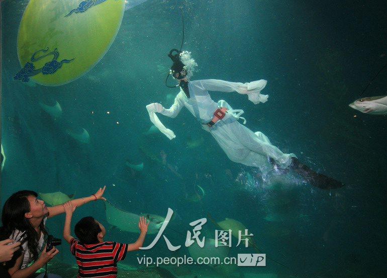 不得转载.购图电话010-65368421)-上海水族馆嫦娥与鲨同游 游客