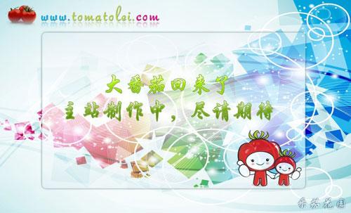 中国画西红柿画法步骤