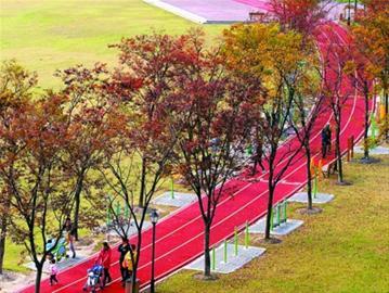 昨天,松江方松街道居民在社区文化活动中心环湖健身步道上散步.