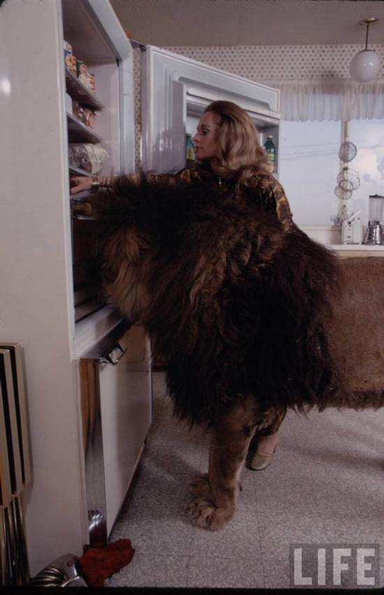 真人版美女与野兽:美国超模竟把雄狮当宠物