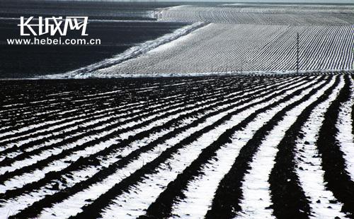 绥化市 宣傳部/[p=30,2,left]绥化市特有的寒地黑土。绥化市委宣传部供图