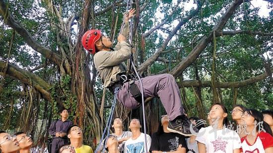 厦门大学学生开始爬树了 台湾交换生坦言很幸