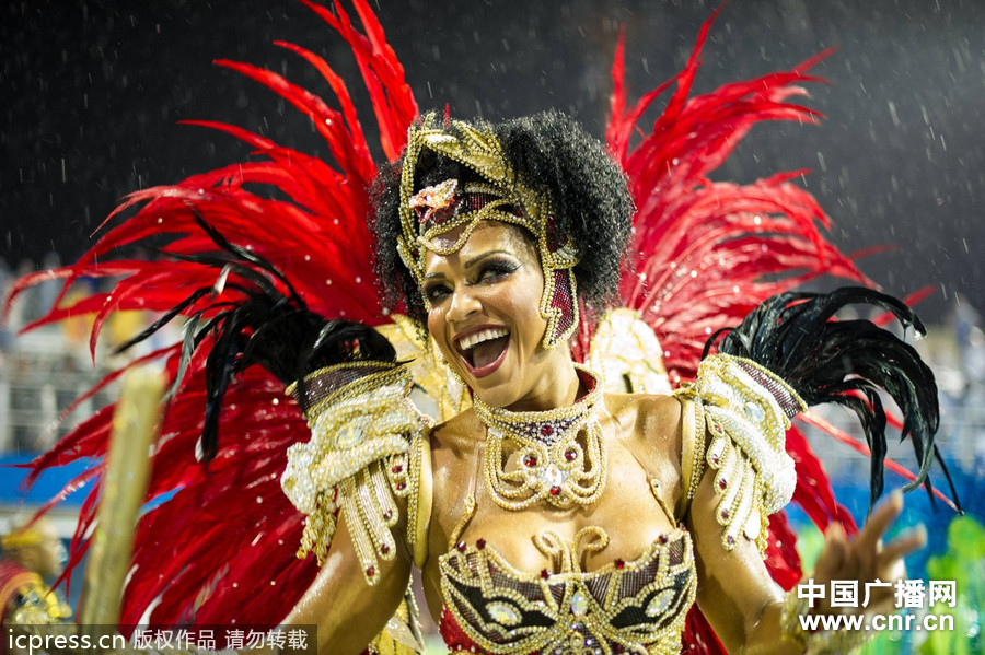 【央广独家】2013巴西圣保罗嘉年华派对 性感