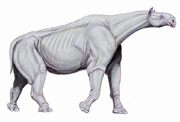 剑齿虎(属名smilodon)曾经生活在北美洲和南美洲的平原上(而非丛林)