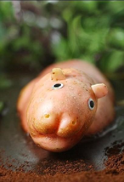 盘点艺术家用果蔬雕刻出超萌动物造型