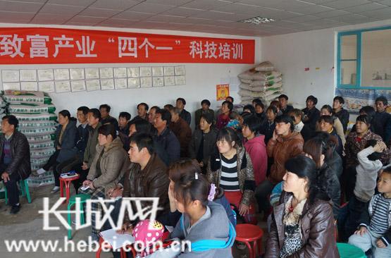 清县、安次区、文安县四个县(区),20余个村(企业).图片