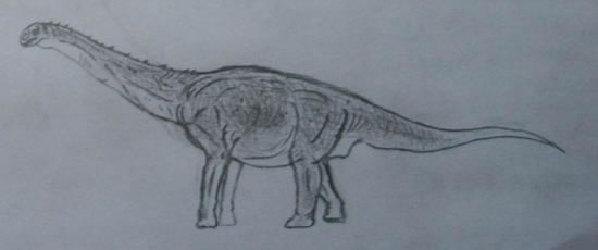 蒙古的巨龙形类恐龙 盘足龙的近亲埃氏长生天龙图片