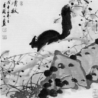 杭州画松鼠第一人画了30年松鼠 见证西湖生态变迁