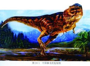 """中国 江苏/▲山东诸城""""恐龙涧""""发现的中国暴龙复原图,暴龙也就是通常说..."""