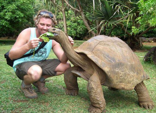 男子环游世界 与巨蟒巨蜥等最危险动物自拍(组图)