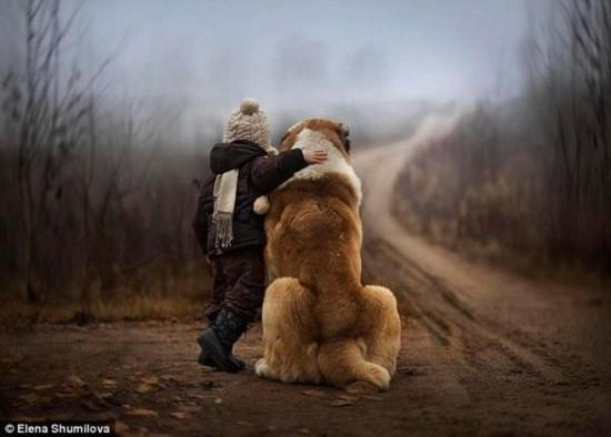 的故事 刻画 人与 动物的真挚感情 狗与人相交图片图片 大狗 配女人图