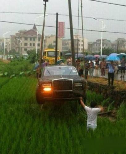 劳斯莱斯汽车冲进稻田高清图片
