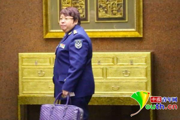 韩红辞去空军政治部文工团副团长一职 转业申请获批