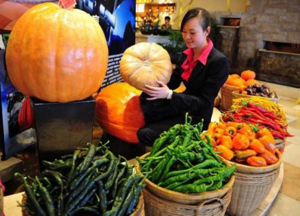 日前撒下了第一批太空蔬菜种子,今年秋天,游客就能近距离观赏到各种
