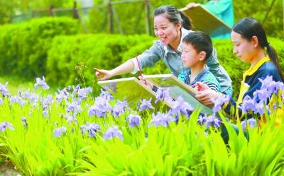 有爱无碍 共享阳光 --江苏宝应特殊教育发展掠