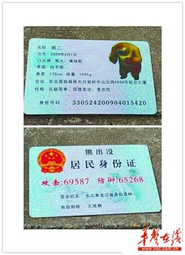 """女子手持""""熊出没""""身份证:附身高星座等信息(图)"""