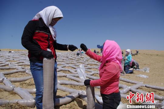 青海省荒漠化与沙漠化土地面积再呈双降