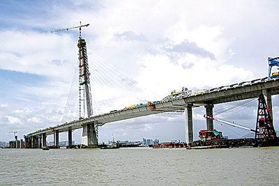 已建成的跨海大桥香港一侧的斜拉索.图片来源:大洋网-深圳湾大桥