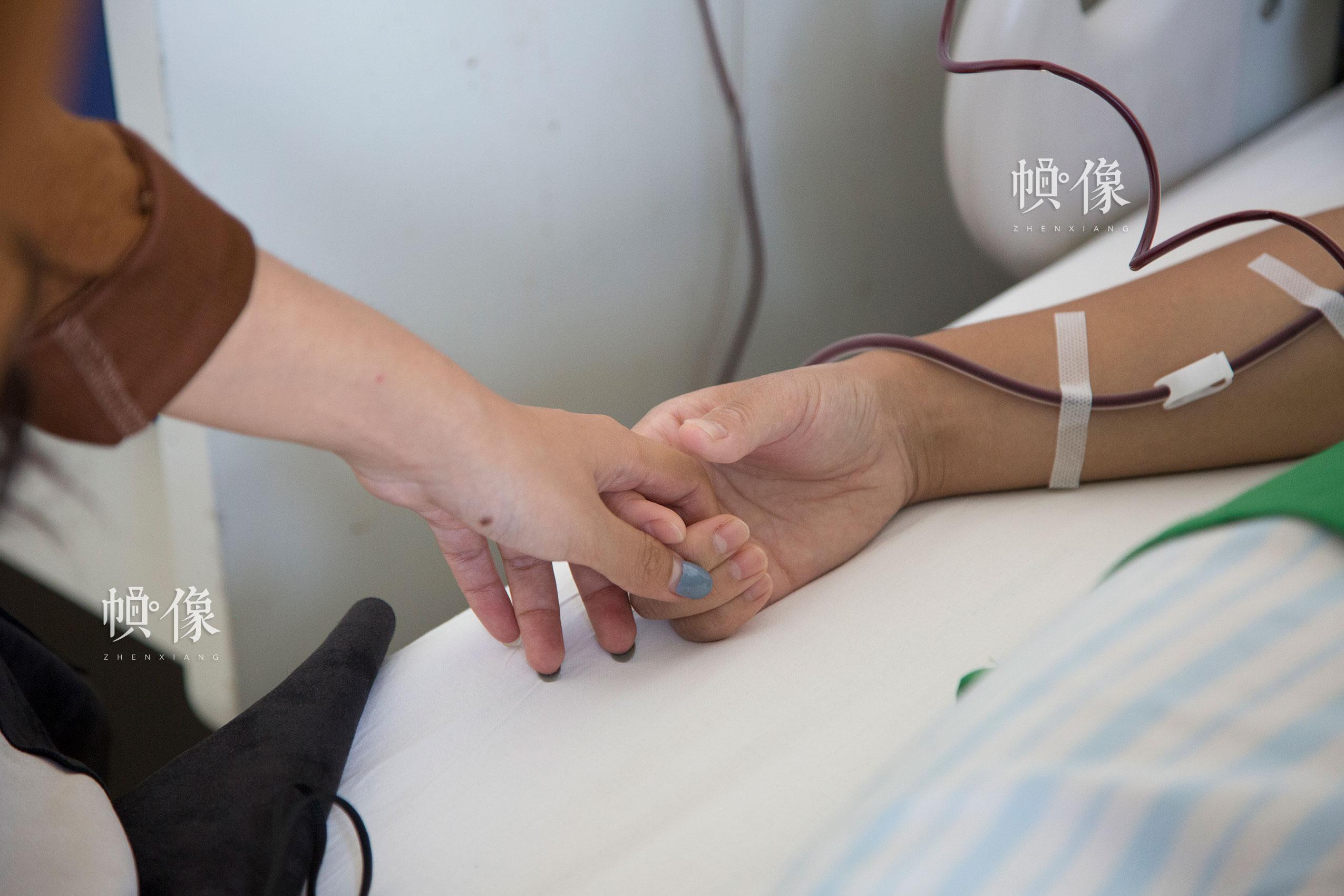 2017年8月30日,北京海军总医院,配型成功的曲女士进行造血干细胞捐献,前来看望的朋友拉住曲女士的手。中国网记者 黄富友 摄