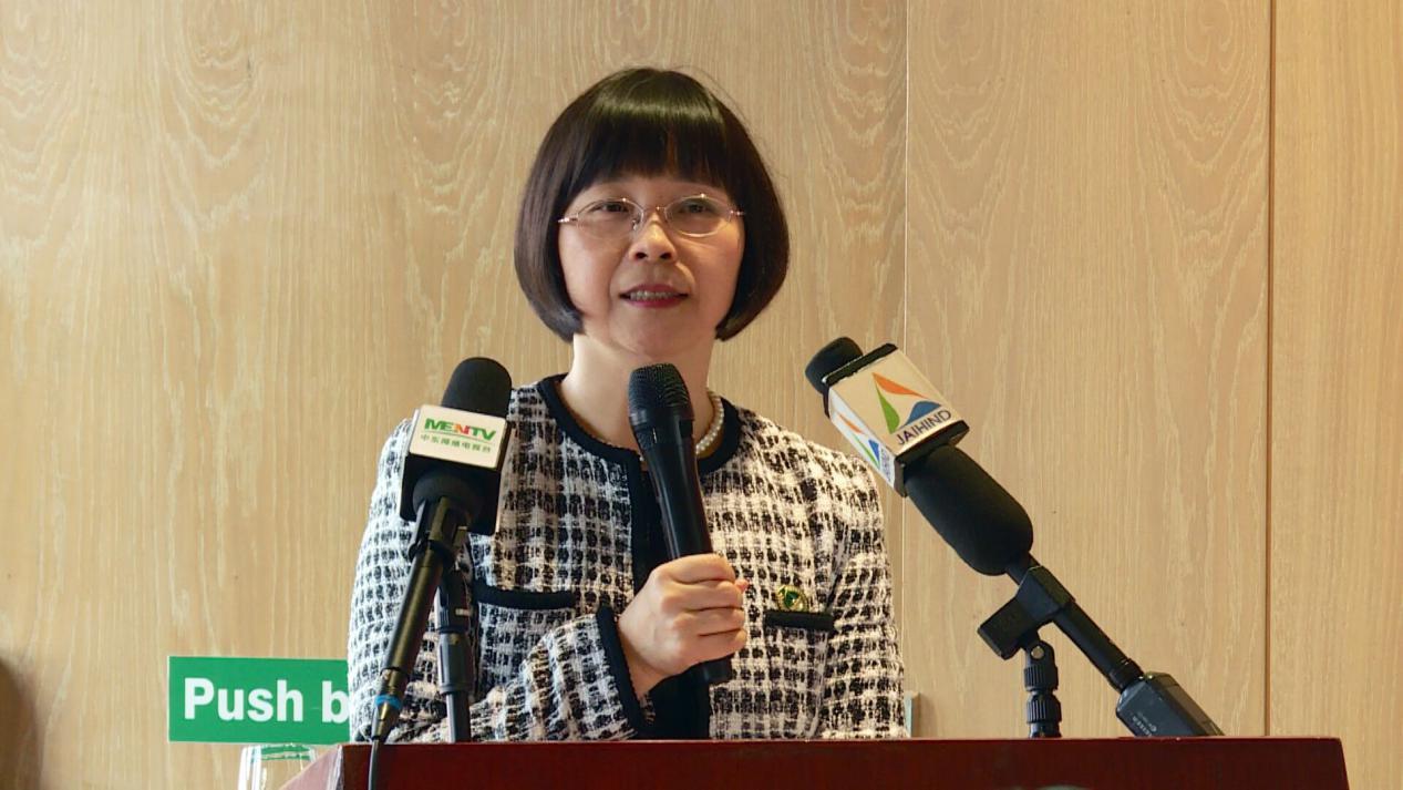 迪拜将首次在大年初一举办中国春节大巡游活动