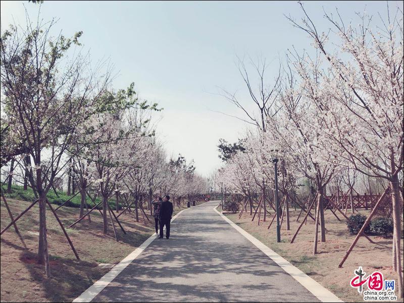 http://www.msbmw.net/qichexiaofei/31064.html