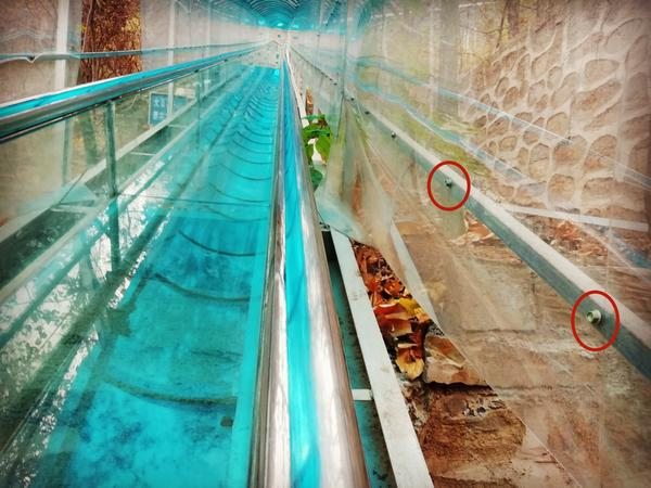 景区玻璃滑道发生意外 游客手掌被割出六厘米伤口