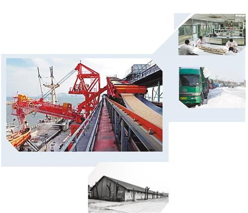 公司结构内部框架图