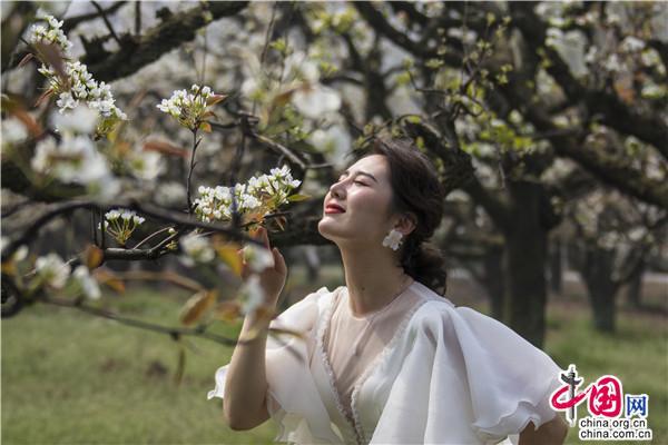 江苏徐州马陵山景区第二届最美花仙子评选报名