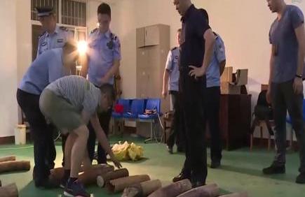 南宁海关今年以来查办濒危物种走私案件100起 李坚柔夺冠视频