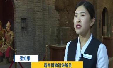 廊坊霸州博物馆:听文博故事  观历史烟云 北京国际电影节