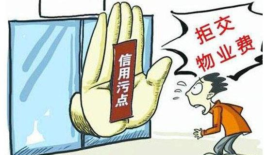 上海:物业失信将被记分惩罚  新版物业信用管理办法实施 8岁小象