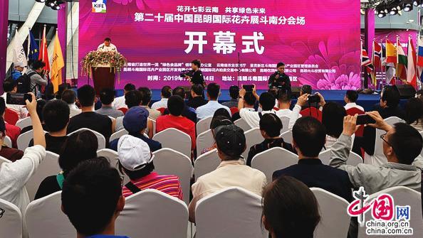 中国昆明国际花卉展开幕 斗南分会场推出八项精彩活动