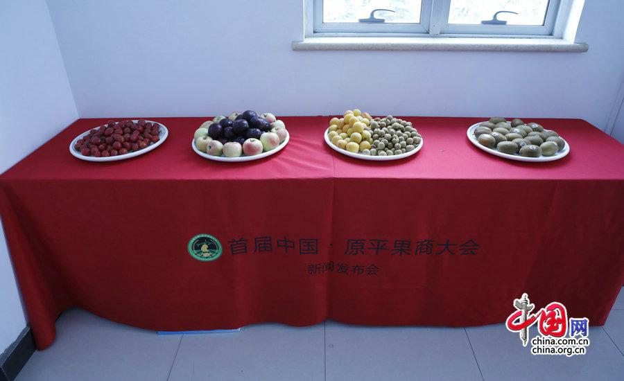 《秒速时时彩开户》_首届中国·原平果商大会新闻发布会在京召开