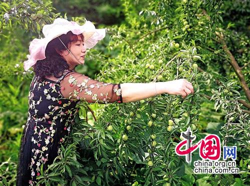http://www.cqsybj.com/wenhuayichan/59399.html